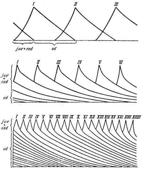 Вікова структура популяції
