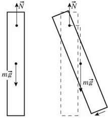 Види рівноваги   Статика