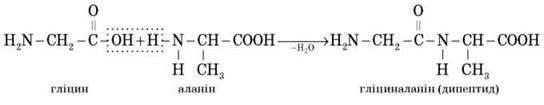 Білки як високомолекулярні сполуки. Головні амінокислоти, що беруть участь в утворенні білків. Рівні структурної організації білків. Властивості білків: гідроліз, денатурація, кольорові реакції