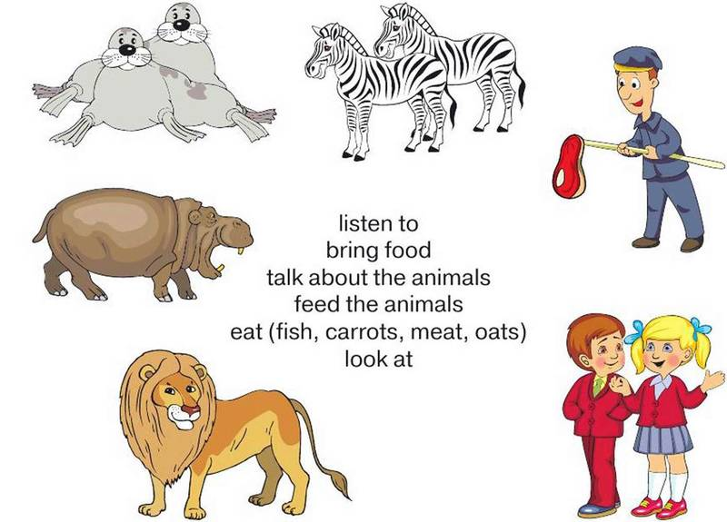 We Are Feeding Animals