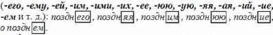 Имя прилагательное: общее значение, морфологические признаки, роль в предложении