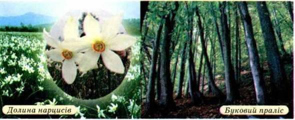 Загальні риси природних умов. Висотна поясність. Природоохоронні території